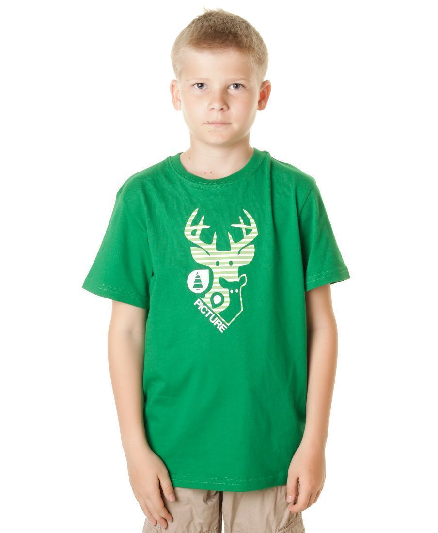 Футболка дет. Picture Organic Dear Kids Dark Green
