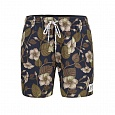 Шорты (борд) мужские Picture Organic IMPERIAL 17 BOARDSHORTS B Automn
