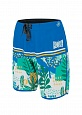 Шорты (борд) Picture Organic ANDY 17 BOARDSHORTS A Newart